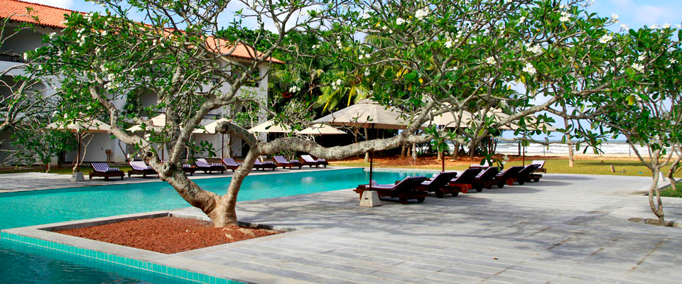 mahagedara-swimming-pool-2_1.jpg